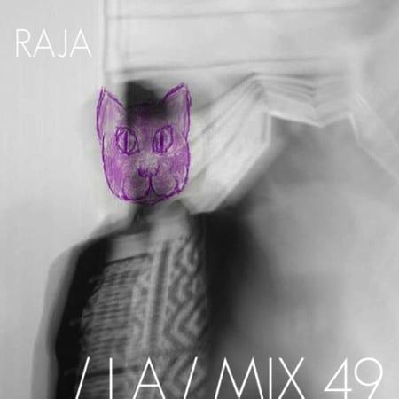 IA MIX 49 RAJA