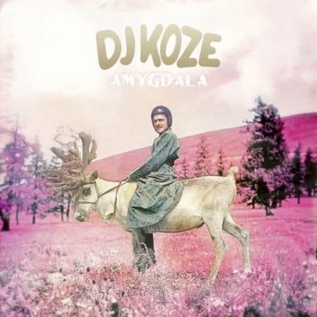 DJ-Koze-Amgdala