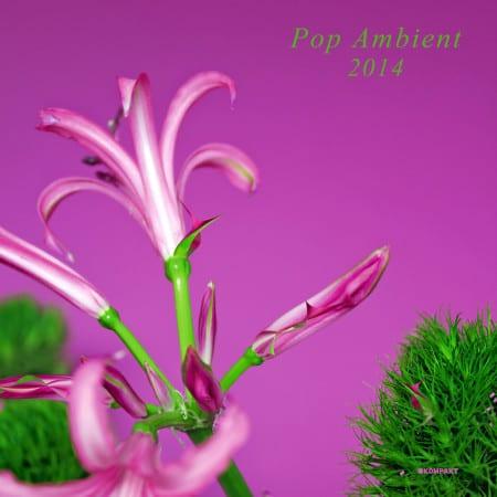 Pop-Ambient-2014