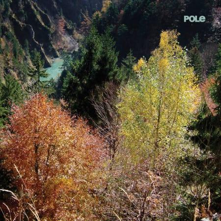 Pole-Wald