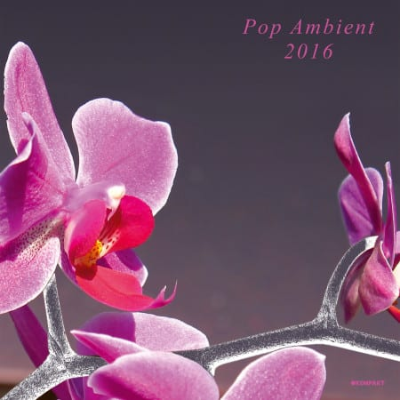 Pop-Ambient-2016