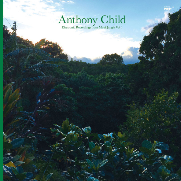 Anthony Child: Electronic Recordings from Maui Jungle Vol. 1
