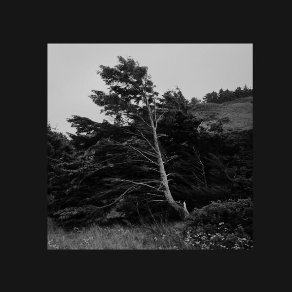Alvin Aronson announces 'High Rise' EP feat. Galcher Lustwerk & Morgan Louis