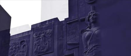Purple-Wide-Shot