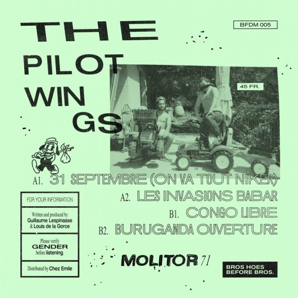 The Pilotwings: Molitor 71
