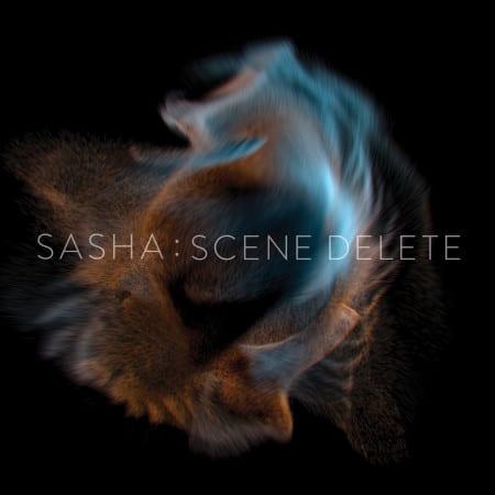 Scene-Delete