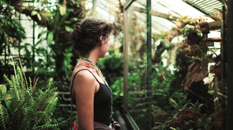 Sassy-J-Greenhouse