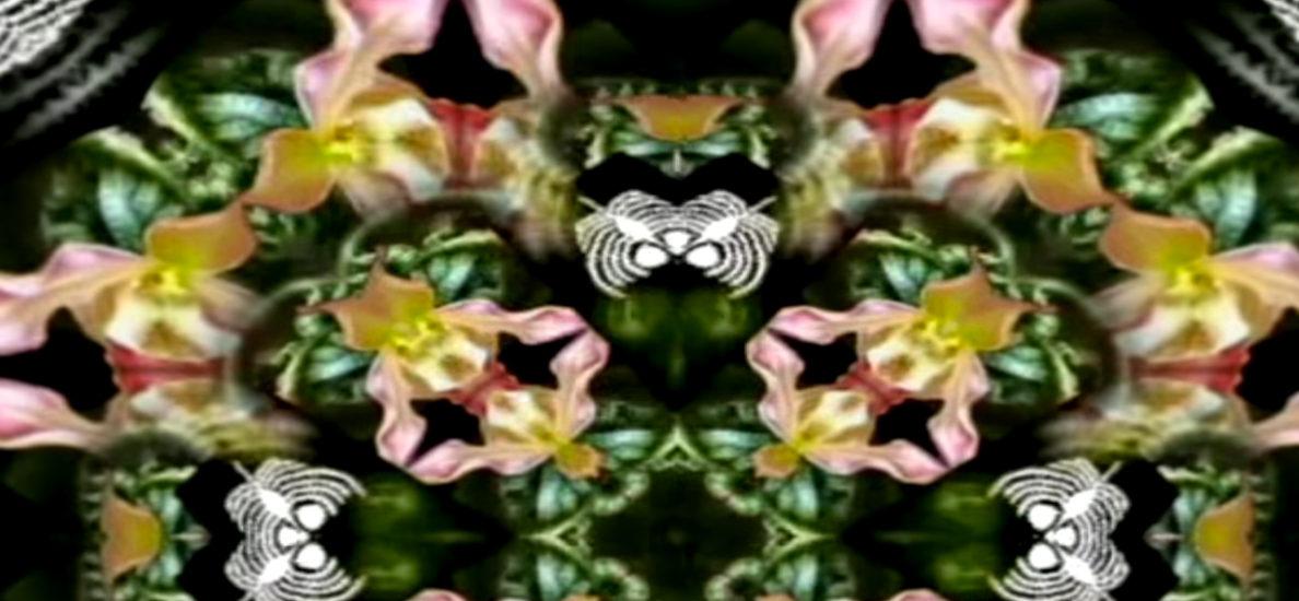 Video Premiere: DJ bwin - Mit Bonus ins Casino