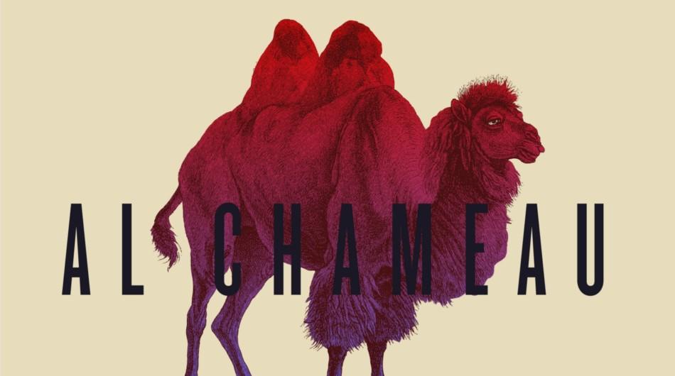 al-chameau-art