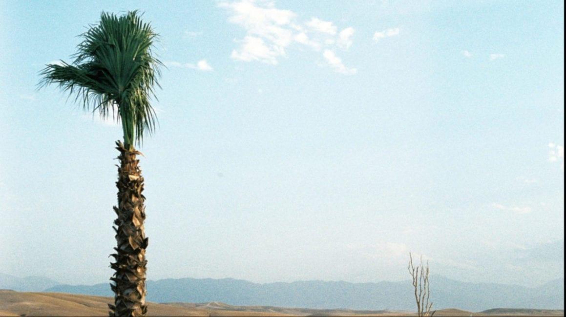 Desert Rave 10